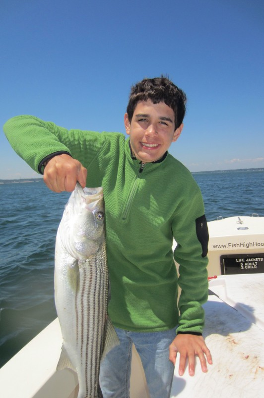 A striped bass caught on High Hook